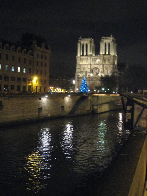 Night scene of Notre Dame Cathedral across the Seine in Paris, France