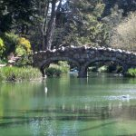 Friday in the Golden Gate Park