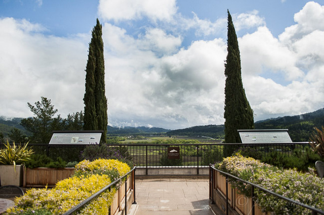 24 Hours in Calistoga