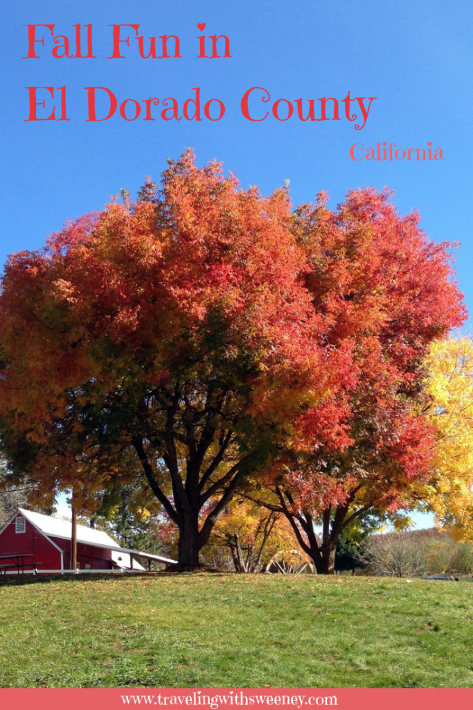 Wine tasting, apples picking, festivals, and enjoying fall colors -- autumn is a great time to visit El Dorado County, California