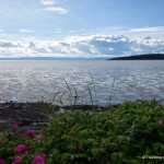 On the Waterfront: A Taste of Kamouraska