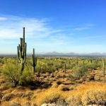 Easy Hiking and Biking in Scottsdale