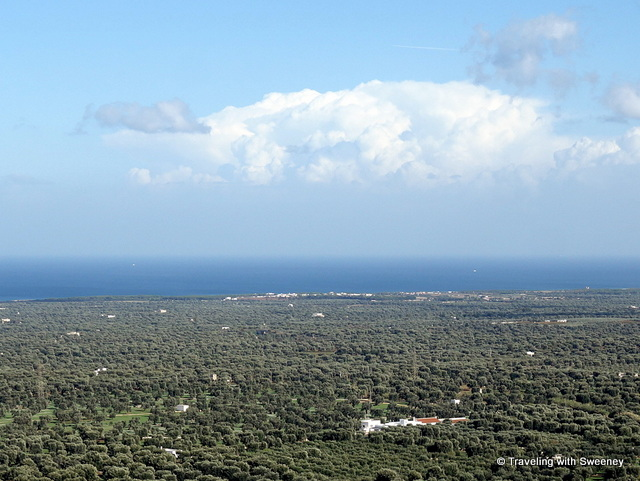Vast expanses of olive groves to the Adriatic Sea