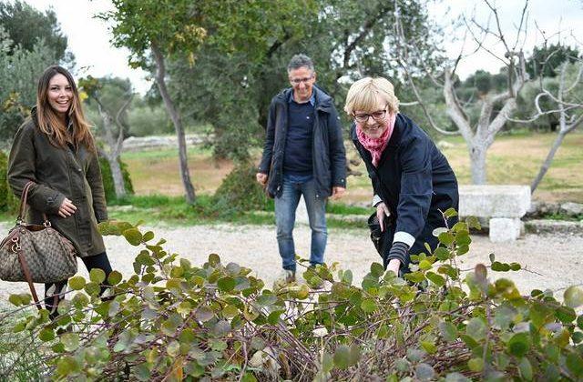 Examining the flora at Antica Brancati in Dune Costiere Park in Ostuni, Puglia, Italy