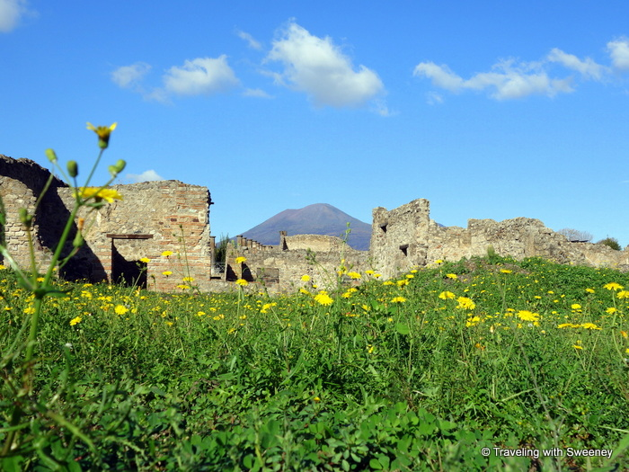 Pompeii: Day Trip from Rome