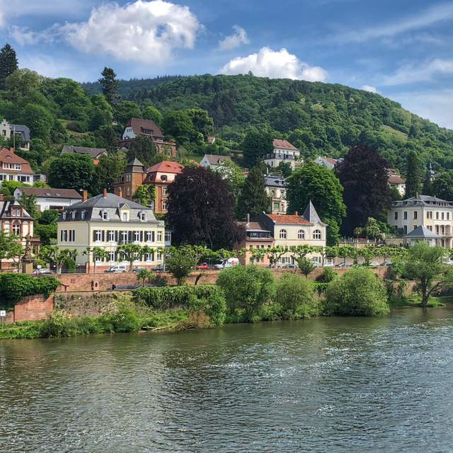 Gorgeous homes along the Neckar River from Heidelberg Castle in Germany