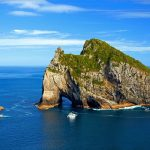 Summer Holiday Activities in New Zealand