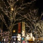 Chicago: My Kind of Town at Christmas