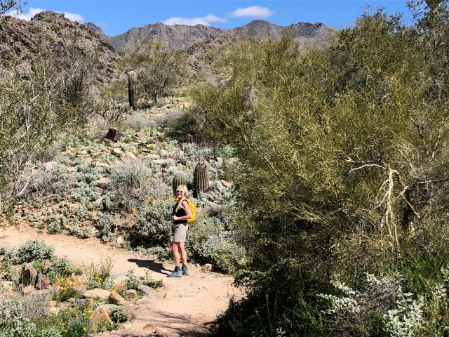 HIking on the Gateway Loop Trail in the McDowell Sonoran Preserve, Scottsdale, Arizona