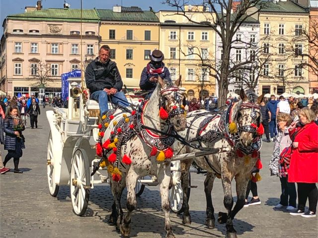 Horse-drawn carriages take tourists around Rynek Glowny, Krakow, Poland