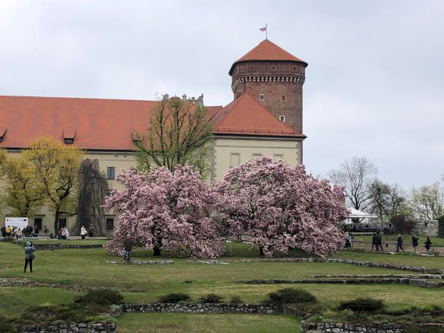 A view of Wawel Royal Castle from the gardens in the springtime, Krakow, Poland