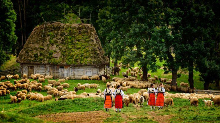 Romanian farm -- Photo by Barbara Nelson