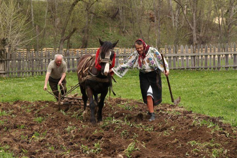 Romanian farmers at work -- Photo by Barbara Nelson