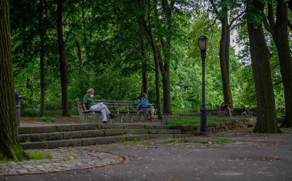 Serenity in the woods at Linden Terrace in Fort Tryon Park, New York City Upper Manhattan
