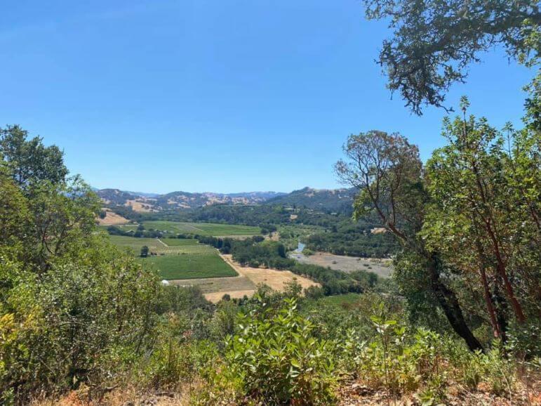 View from a trail at Healdsburg Ridge Open Space Preserve, Healdsburg, California