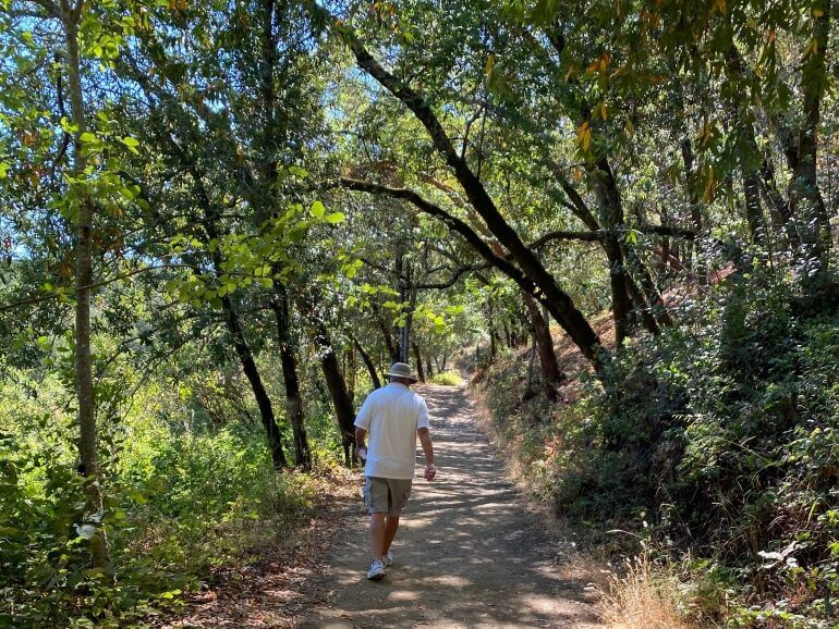 Mr TWS walking on a trail in Healdsburg Ridge Open Preserve in Healdsburg, Sonoma County, California